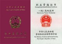 國家職業資格一級(高級技師)