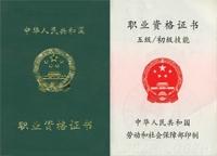 國家職業資格五級(初級)